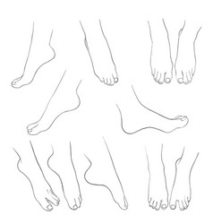 hand drawn women feet vector image