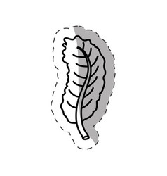 leaf ecology nature monochrome vector image