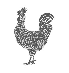 rooster hen or chicken hand drawn with contour vector image