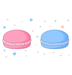 Two cute macarons traditional french almond vector