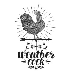 Windvane weather vane label weathercock icon or vector