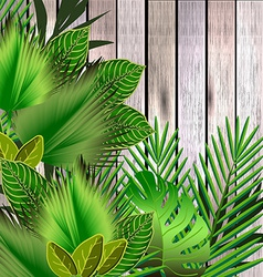 Tropical green leaves over wood vector image vector image