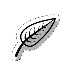 leaf biology plant monochrome vector image