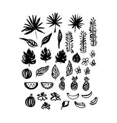 hand drawn brush plants vector image vector image