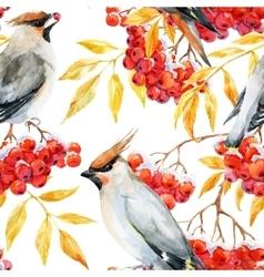 Watercolor waxwing and rowan pattern vector image vector image