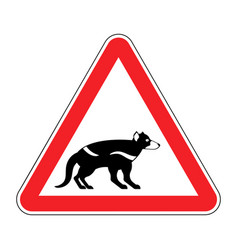 attention tasmanian devil danger is wild beast vector image