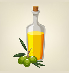 bottle of olive oil with a branch of olives vector image