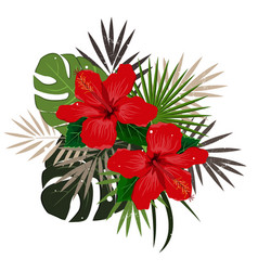 bouquet composition with red hibiscus flower and vector image