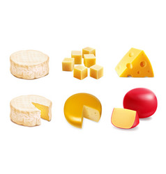 cheese types icons of various kind of cheese vector image
