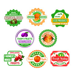 Fruit labels for eco farm food and juice design vector