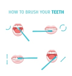 How To Brush Your Teeth vector