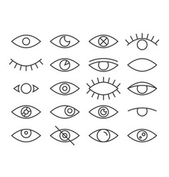 line eye human eyes in different positions vector image