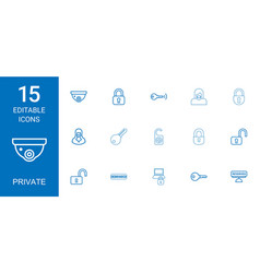 private icons vector image