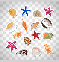 sea shells cute stickers vector image