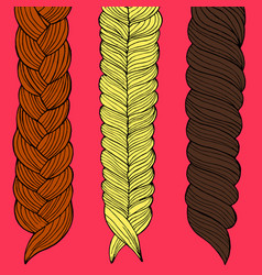 three braids painted by hand vector image