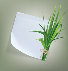 White paper with grass and flowers vector image vector image
