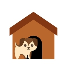 puppy adorable pedigree brown house vector image vector image
