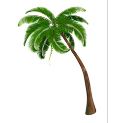 Background with a palm tree vector image