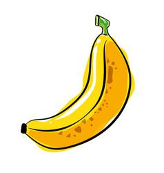Banana fresh and healthy fruit vector