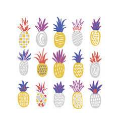 bundle of stylized pineapples of various texture vector image