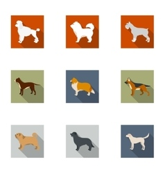 Dog breeds set icons in flat style Big collection vector