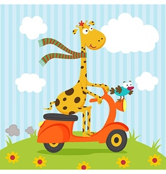 giraffe bird riding on scooter vector image