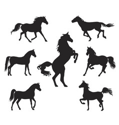 Silhouettes arabian horse vector
