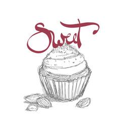 sweet cupcake vector image