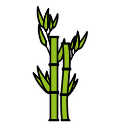 bamboo plant nature icon vector image