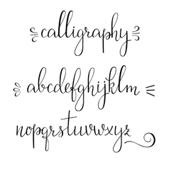 Calligraphy cursive font vector image vector image