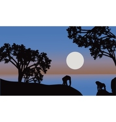 gorilla silhouette with moon vector image