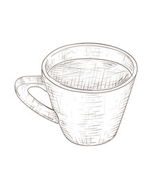 cup of coffee hand drawn sketch vector image