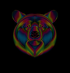 engraving stylized spectrum bear on black vector image