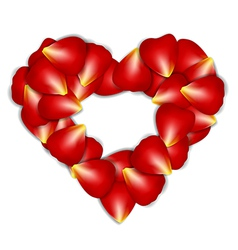 Heart Frame From Red Rose Petals on white vector image