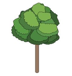 nature tree cartoon vector image