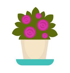 Purple flowers in pot vector