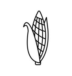 Thin line corn icon vector