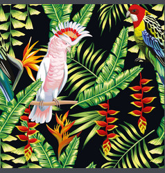 tropical parrot liana flowers leaves pattern vector image