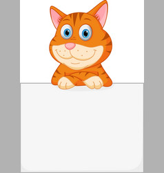 cute cat with sign vector image