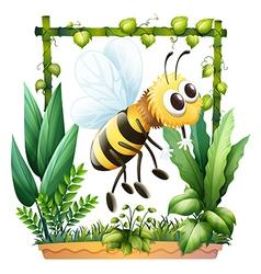 A bee in the garden vector image
