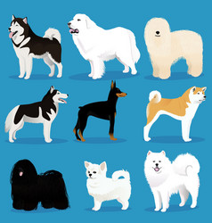 set of dogs vector image