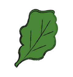 leaf icon image vector image