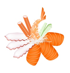 Seafood Sashimi with Chopsticks vector