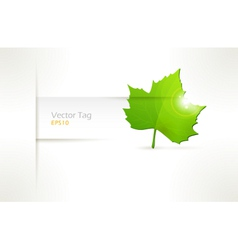 label with green leaf vector image vector image