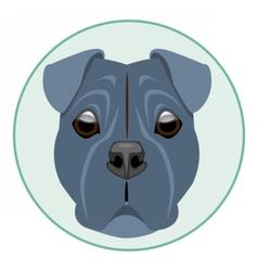 Digital boxer dog face vector image