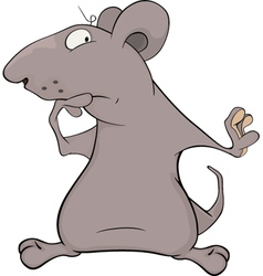 Mouse vector image vector image