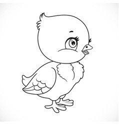 little bachick outlined for coloring isolated vector image