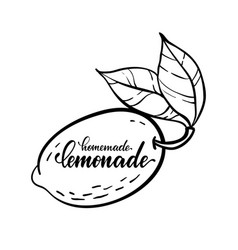 monochrome lemon logo with lettering vector image