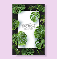 monstera frame with green tropical leaves vector image