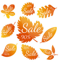 set of autumn yellow-red leaves vector image